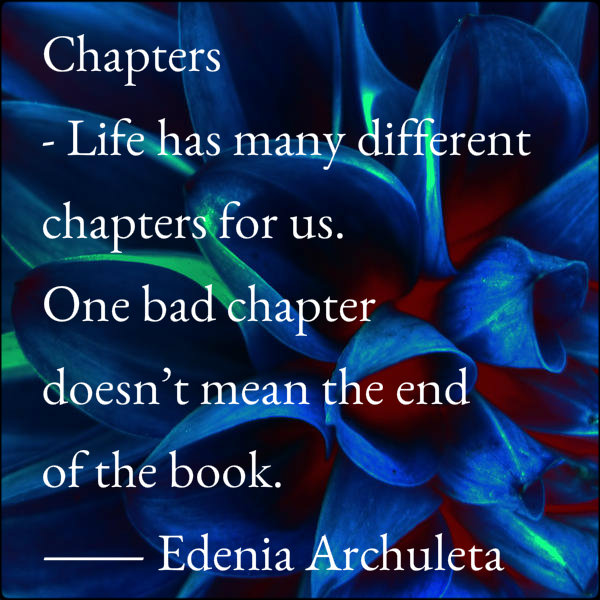 Chapters- Life has many chapters. One bad chapter dosen't mean the end of the book. ~ Edina Archuleta